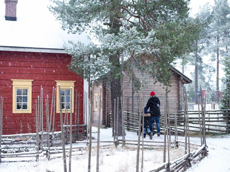koiramäen talvi